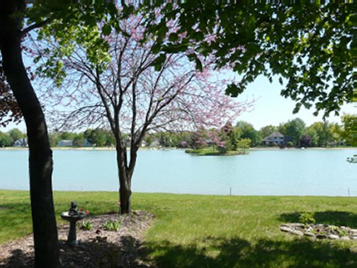 spring view of Lake Cecil